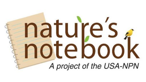 Nature's Notebook | Nature Nation