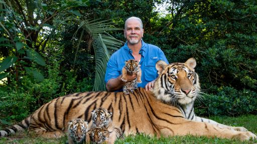 "The Truth About ""Tiger King"" And Cats in Captivity"