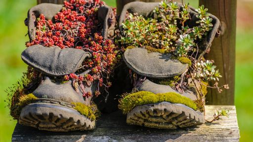 Calculate Your Carbon Footprint | Nature Nation