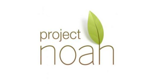 Project Noah | Nature Nation