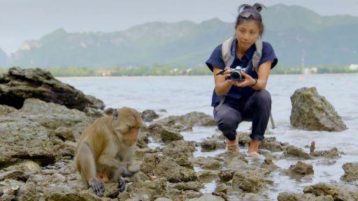 Protecting Primates | Primates