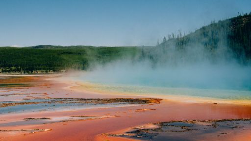 Yellowstone Forever   Nature Nation