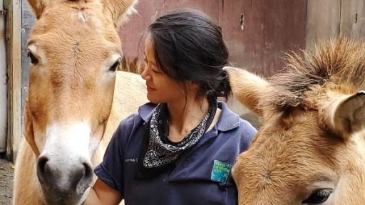 How Culture and Passion Clash for the Millennial Zookeeper