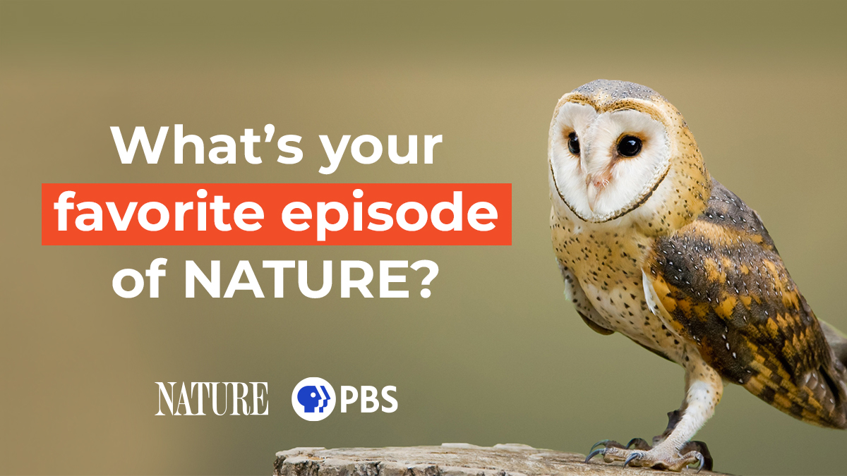 Top NATURE moments, according to viewers like you