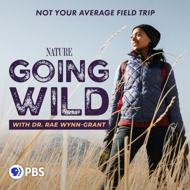 Going Wild with Dr. Rae Wynn-Grant: A PBS Nature Podcast