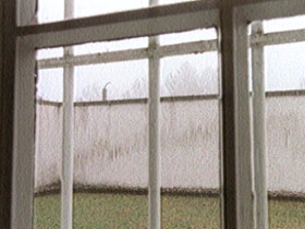 bonhoeffer-post03-cell