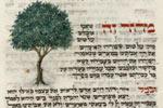 THREE FAITHS Exhibit at New York Public Library