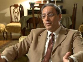 Professor Said Sadek, Professor of Political Science, The American University in Cairo