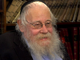 Rabbi Steinsaltz