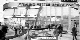 feat-selma-50th-anniversary-1-800