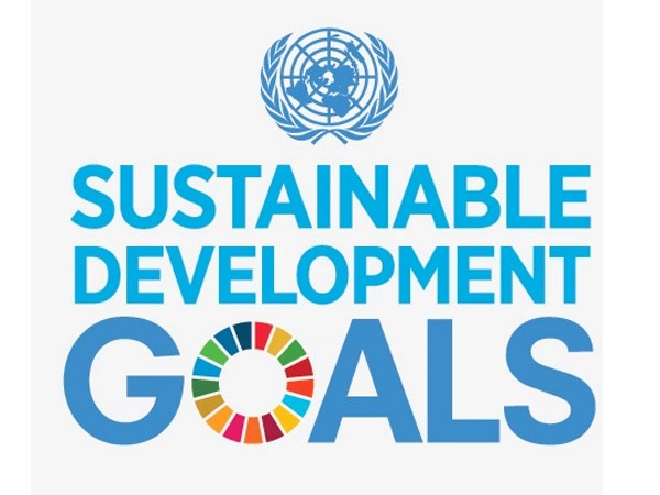 un-sustainable-development-goals-600x450